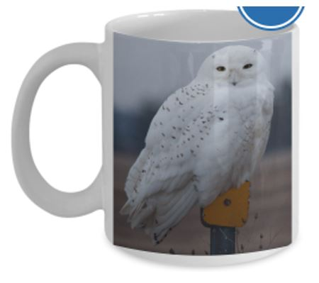 Mugs on Gearbubble